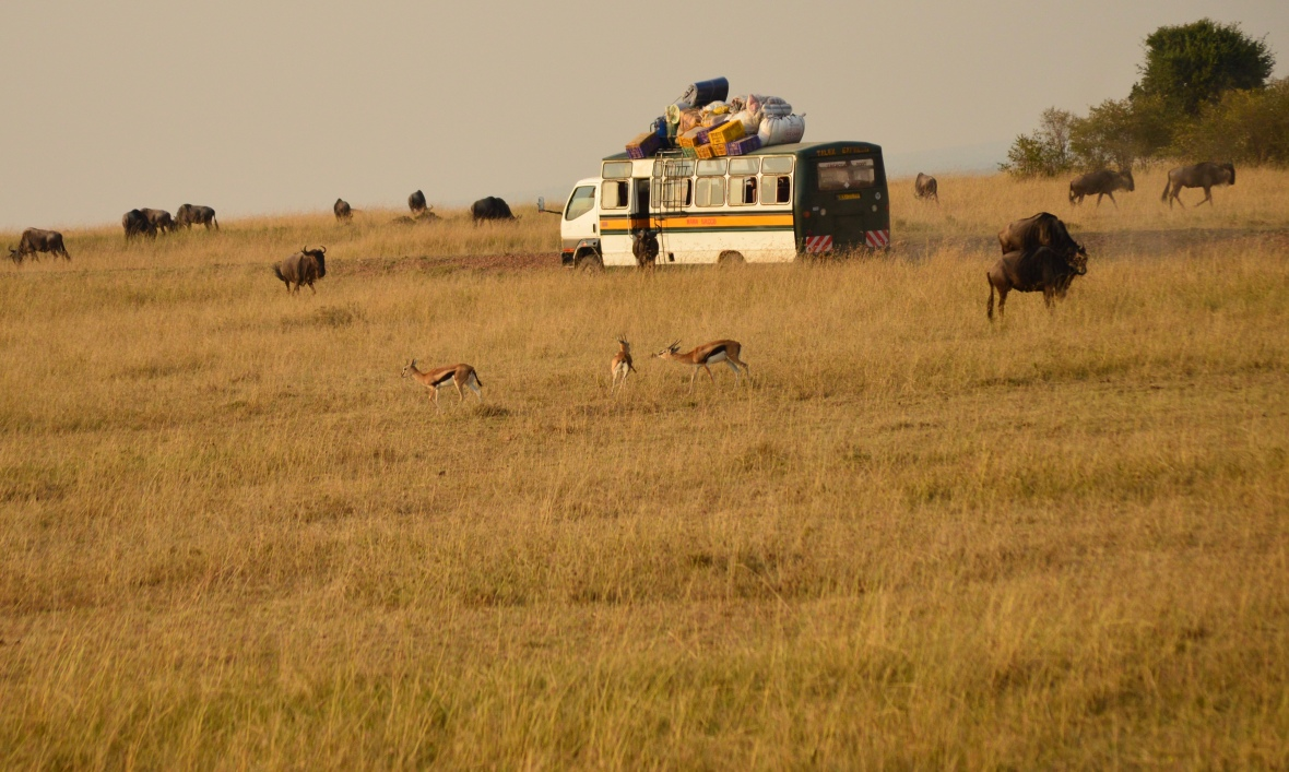 Ragtag bus with overflowing luggage off-roading in Masai Mara National Reserve, Kenya